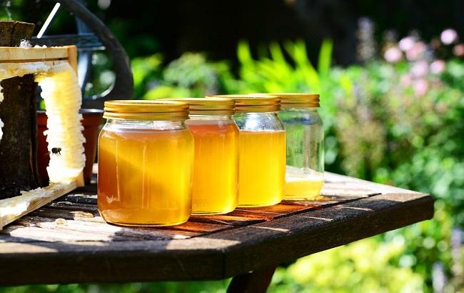 honey-352205_960_720