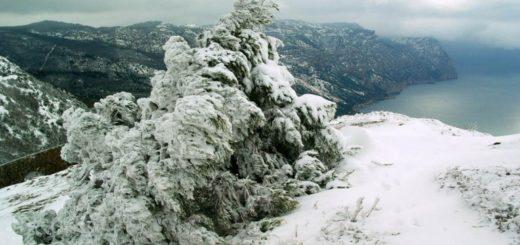 зима-768x513